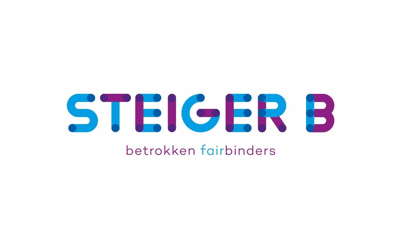 steiger b logo.jpg