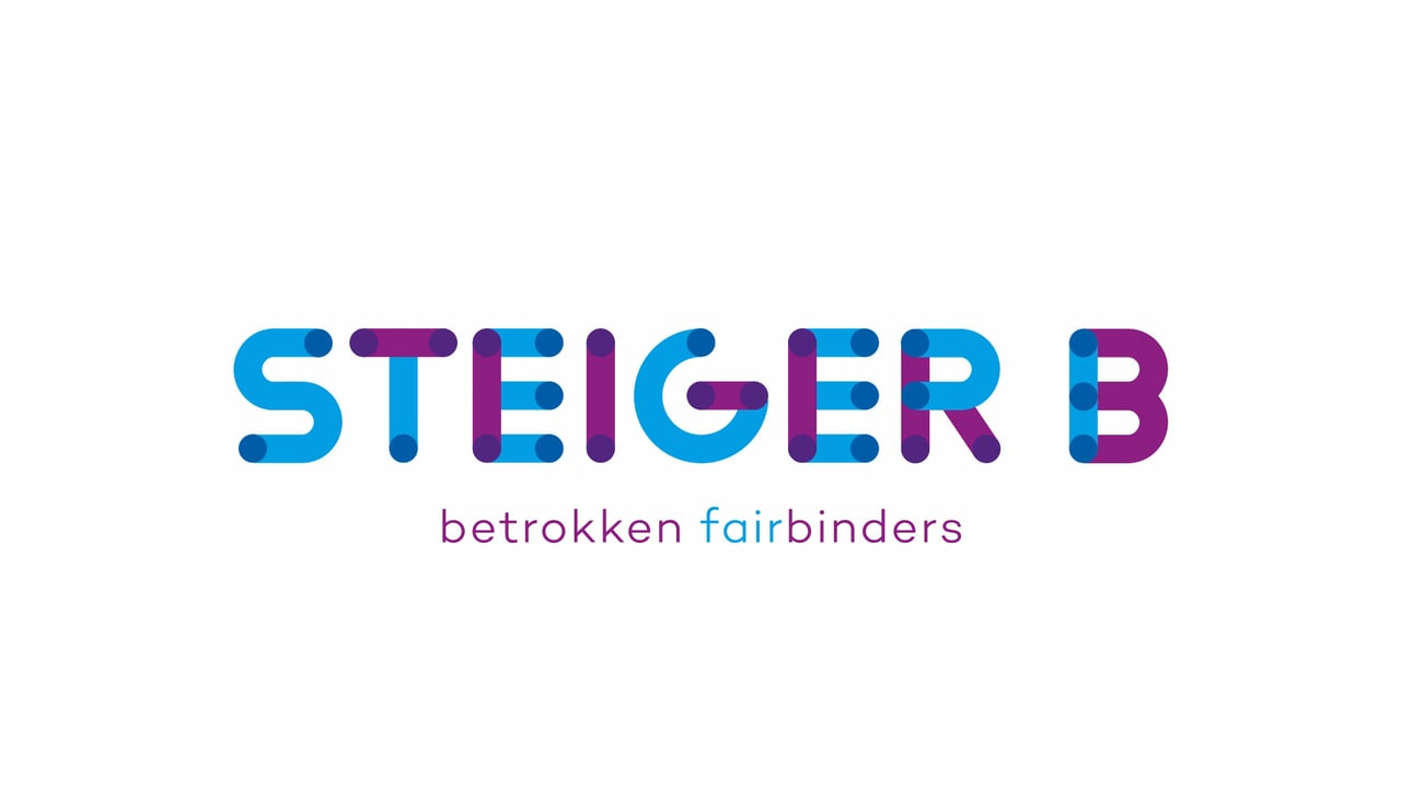 steiger b logo